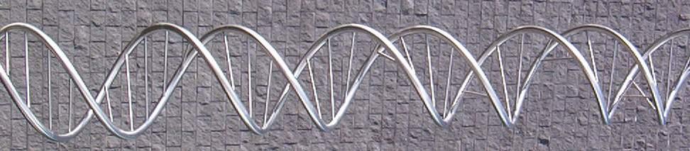 importance of gene expression pdf